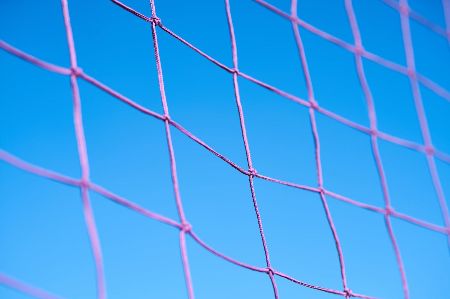 Large image of a pink net.